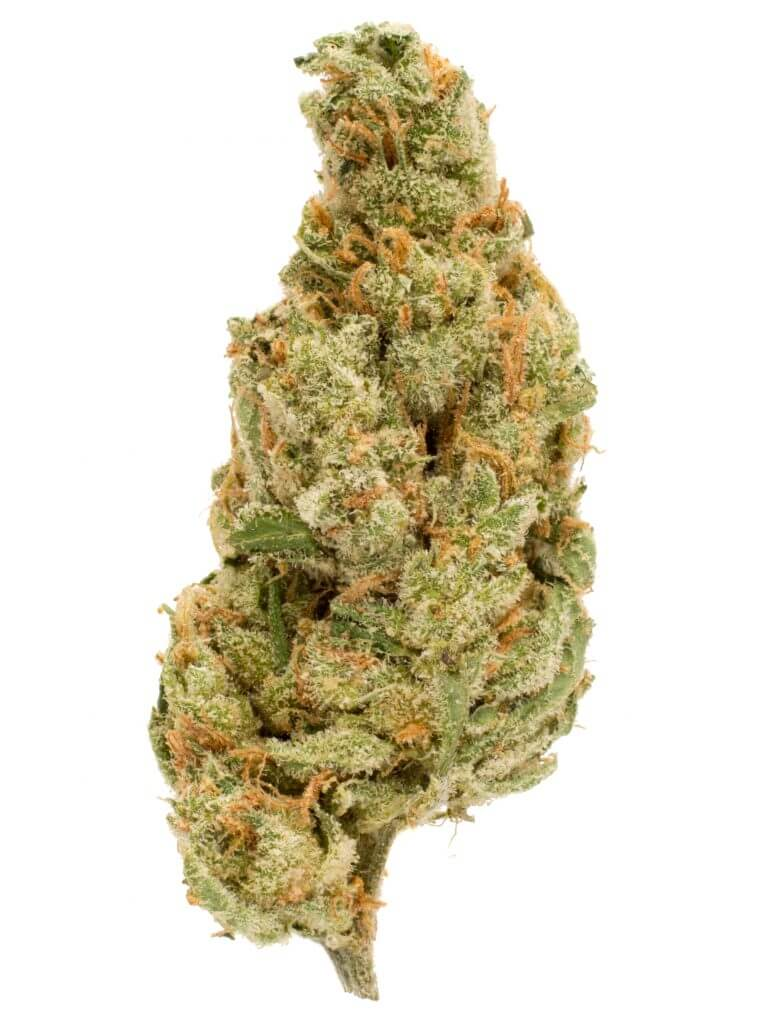 8 spooky weed strains for Halloween